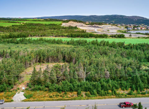 Witless Bay Line Road, Commercial, Lots 1 & 2