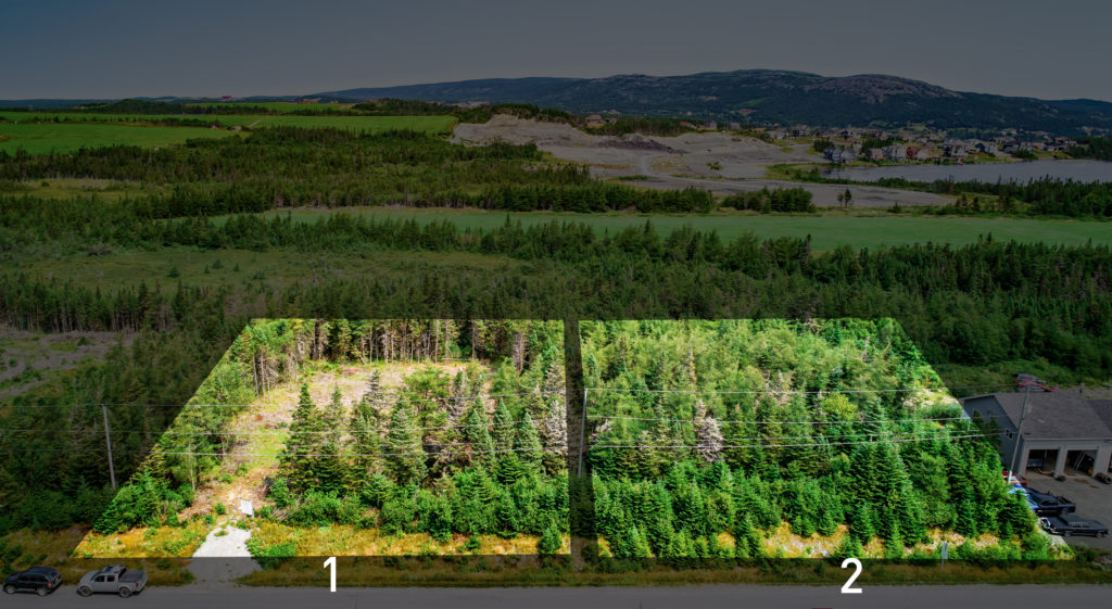 Land for Sale on Witness Bay Line in Witless Bay, Newfoundland. Canada